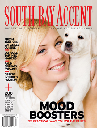 South Bay Accent Magazine Features Mercaptor in Cover Story